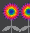 rainbow flowers design