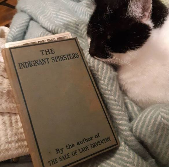 The Indignant Spinsters by Winifred Boggs