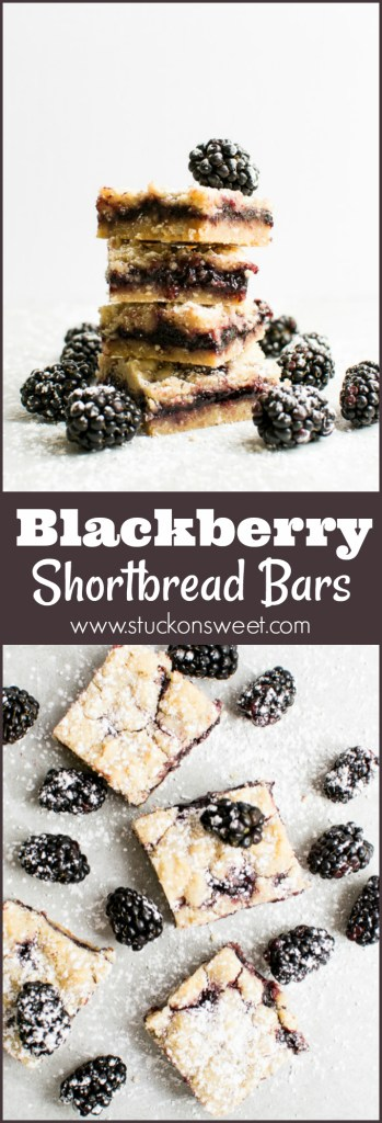 Blackberry Shortbread Bars are insane! These dessert bars are the best dessert I've ever had! This recipe is seriously amazing!