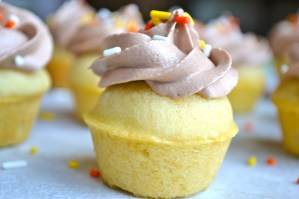 Vanilla Cupcakes with Cocoa Buttercream Frosting