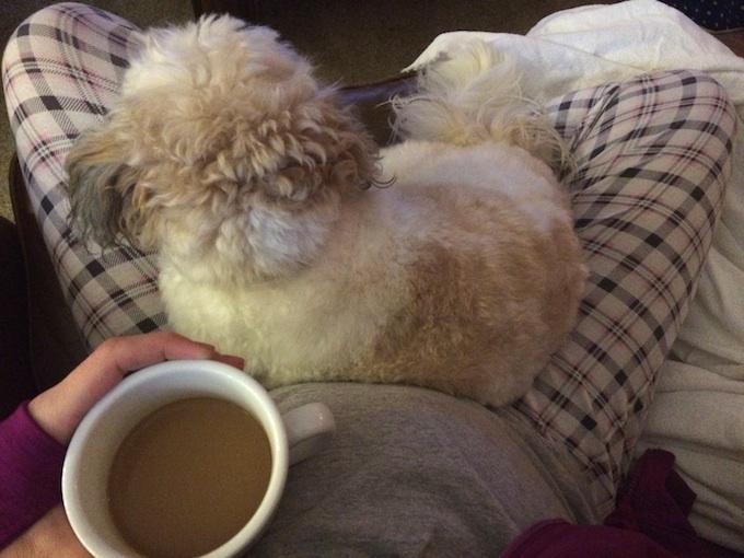 Izzy with Coffee 2