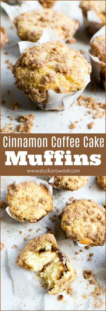 The best cinnamon muffin ever! These coffee cake muffins are a favorite of mine. It's a great recipe. My family loves them!