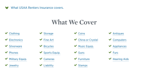 USAA Renters Insurance