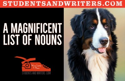 Read more about the article A magnificent list of nouns