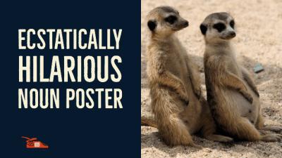 Ecstatically Hilarious Noun Poster