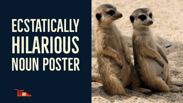 You are currently viewing Ecstatically Hilarious Noun Poster