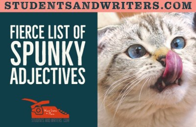 Read more about the article Fierce list of spunky adjectives