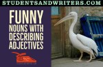 Funny Nouns with Describing Adjectives
