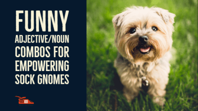 Funny adjective/noun combos for empowering sock gnomes