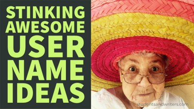 Read more about the article Stinking Awesome User Name Ideas