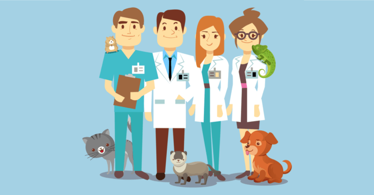choosing the right vet school