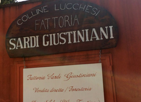 Lucca2014_StudentessaMatta68