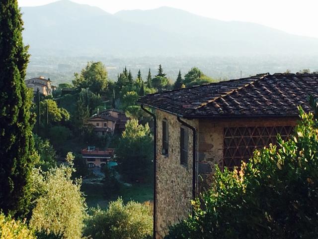 lucca-2015-italian-language-program-Photo-Album