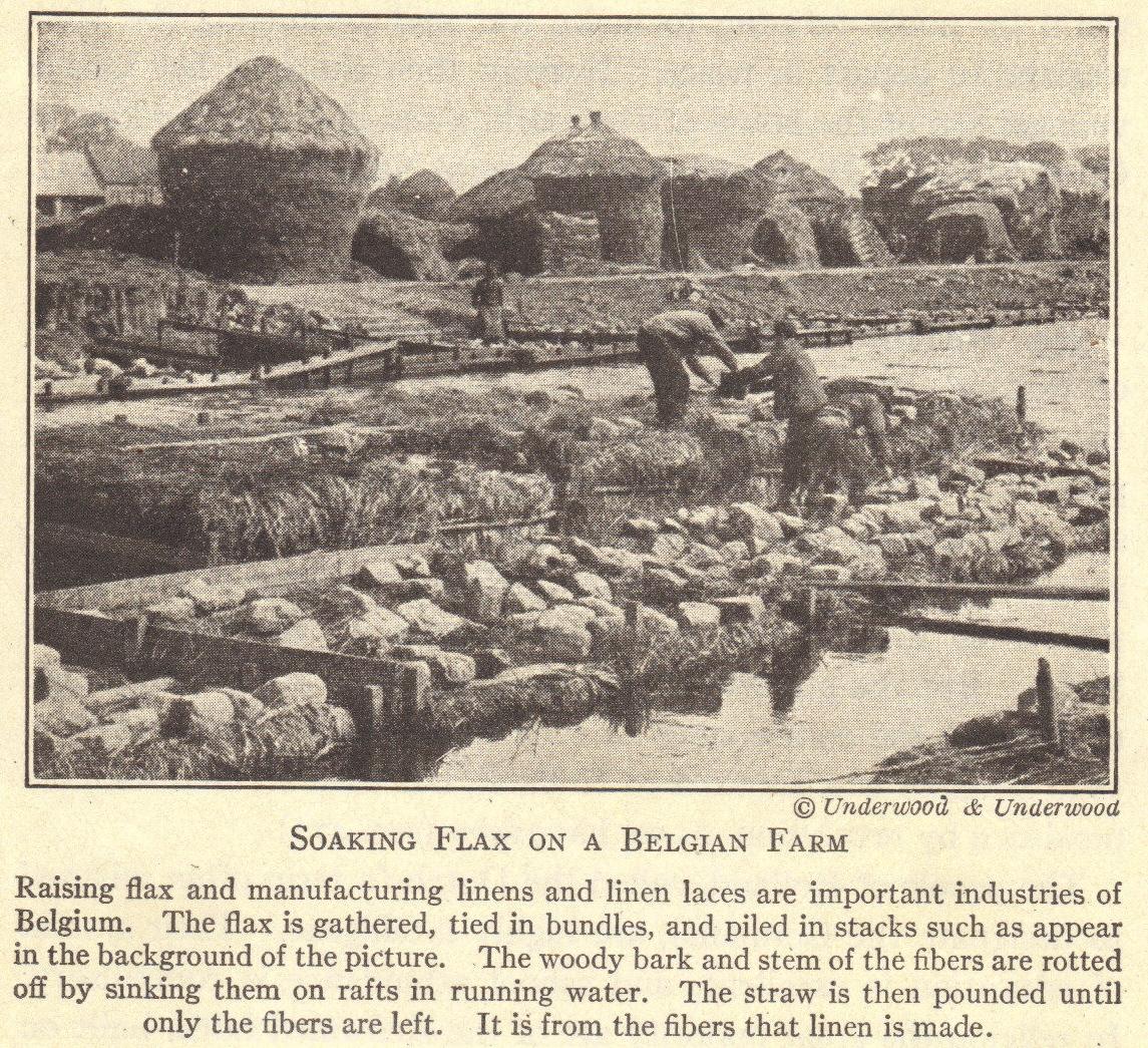 Belgian Flax Farm Of Wwi