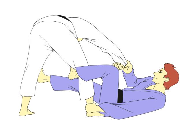 Jiu Jitsu black belts in traditional gis demonstrating De La Riva Guard