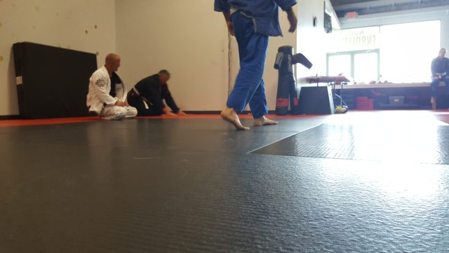 A jiu-jitsu gym with clean mats to exercise on