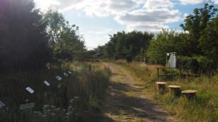 Path in the Nieklitz wilderness
