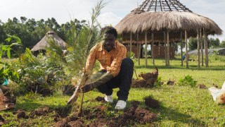 Philip planting tree.
