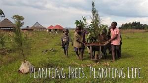 Planting Trees. Planting Life.