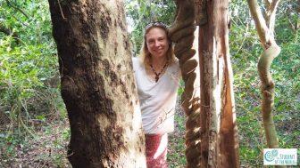 In a forrest in Tamil Nadu, Bioregion of Auroville