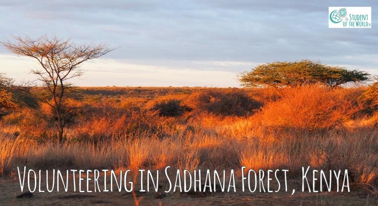 Sadhana Forest Kenya, Volunteering Experience