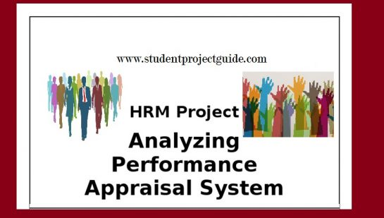 Performance Appraisal Report