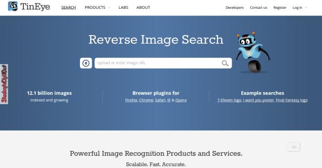 Reverse image search using TinEye