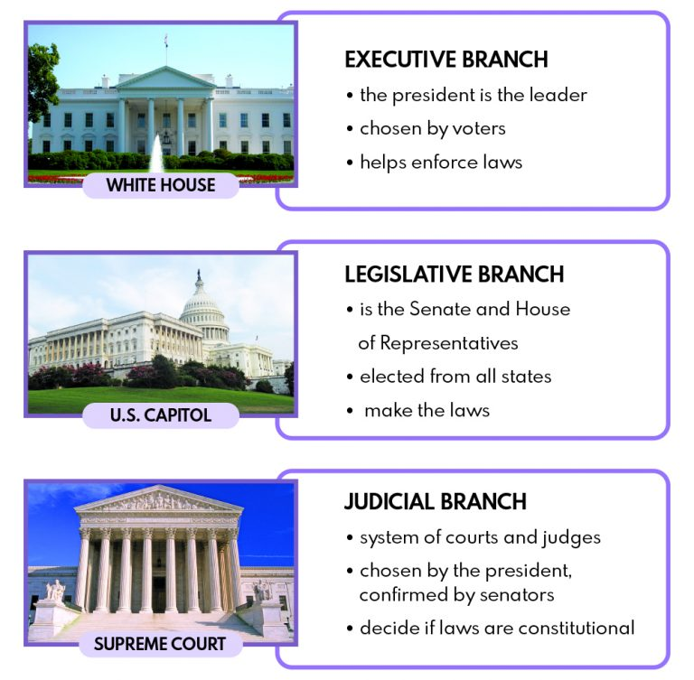 Three branches of government lesson plan, studies weekly