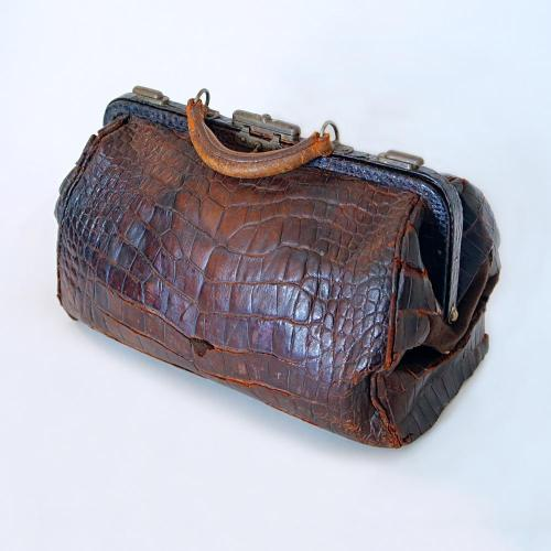 Alligator Purse from Susan B Anthony