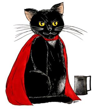 Karadoc le chat