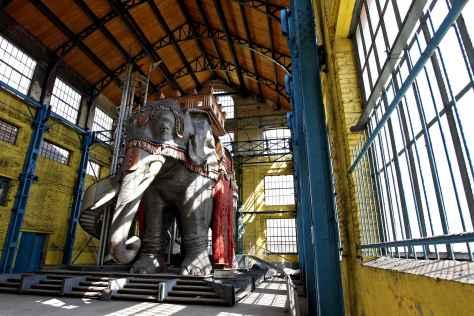 Photo de l'éléphant dans un des bâtiments désaffecté du site minier de Wallers-Arenberg (2014). Photo de Mikaël Libert pour le journal 20 Minutes.