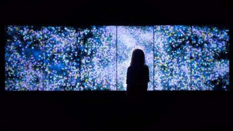TeamLab, Flowers and People - Dark, Photographie de l'installation.