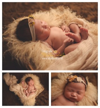 newbornfotoshoot naturel