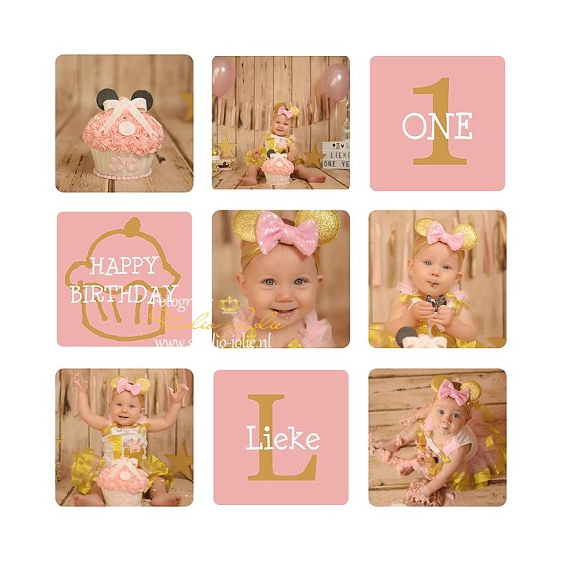 Roze-cakesmash.jpg