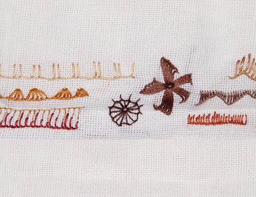 embroidery buttonhole stitch festonsteek