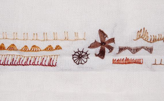 embroidery stitches buttonhole stitch borduursteken festonsteek