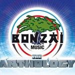 """61. Bonzaï """"Remix"""""""