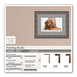 Interactive Frame Design