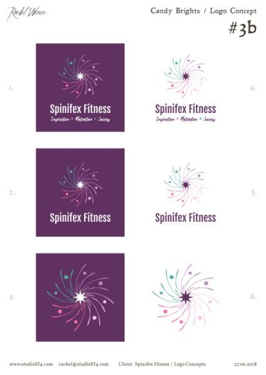 SPINIFEX FITNESS palette exploration 5