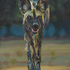 The Studio Art Gallery - Untamed by Therese Mullins
