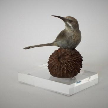 The Studio Art Gallery - Sculpture - Sugarbird on Pincushion by Chris Bladen (1)