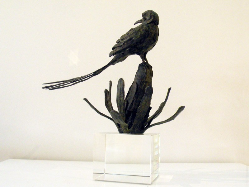 The Studio Art Gallery - Richard Gunston Sculptures - Long Tailed Cape Sugarbird Detail 3