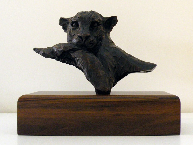 The Studio Art Gallery - Richard Gunston Sculptures - Resting Leopard Detail 1