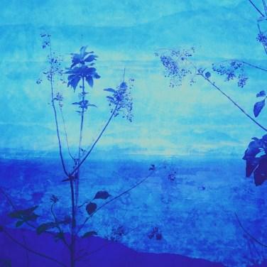 The Studio Art Gallery - Edge of Blue - Seascape II by Robyn Schoon - Digital Mixed Media
