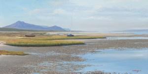 The Studio Art Gallery - Andrew Cooper - Churchhaven West Coat National Park