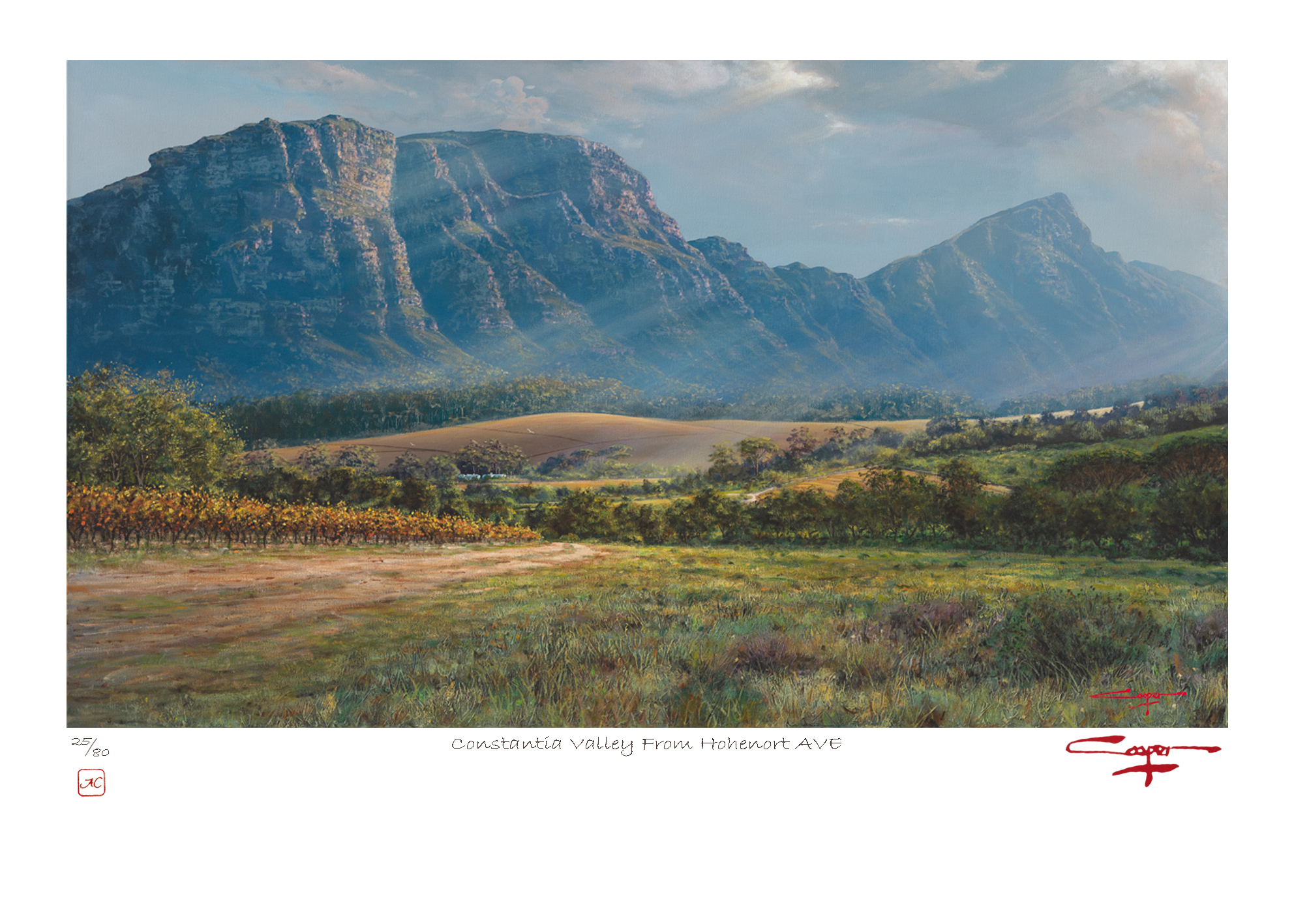 The Studio Art Gallery - Andrew Cooper - Constantia Valley From Hohenort AVE Limited Edition Print