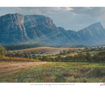 Andrew Cooper | The Studio Art Gallery - Constantia Valley From Hohenort AVE Limited Edition Print