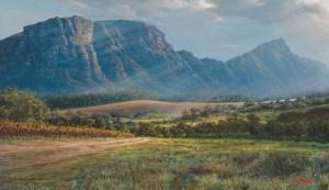 Andrew Cooper | The Studio Art Gallery - Constantia Valley From Hohenort AVE