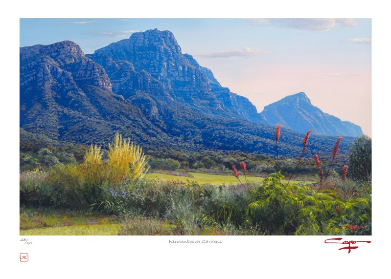 Andrew Cooper | The Studio Art Gallery - Kirstenbosch Gardens Limited Edition Print