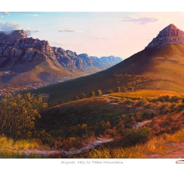 Andrew Cooper | The Studio Art Gallery - Signal Hill to Table Mountain Limited Edition Print